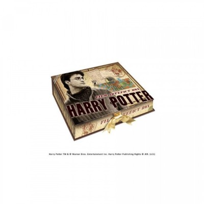 Harry Potter - Boite d'artefacts Harry Potter - x2