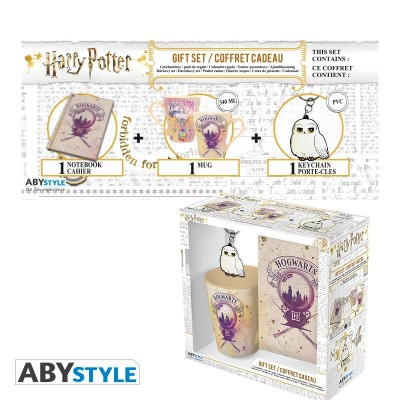 "Gift Pack Harry Potter - Mug 250ml + Porte-clés + Cahier ""Amortentia"""