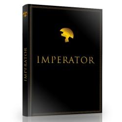 """Minions - Poster de Porte """"Ballon"""" roulé filmé (53x158)"""