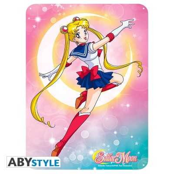 Plaque Métalique - Attaque lunaire - Sailor Moon (28x38)