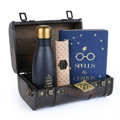 Gift Pack - Harry Potter - Trouble finds me - Premium set